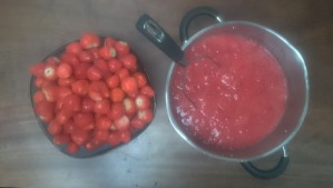strawberry-wine-mashing